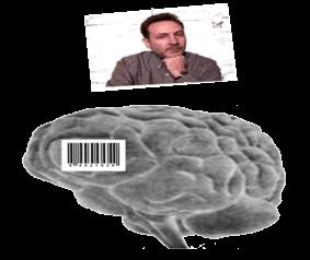 brain-ilay