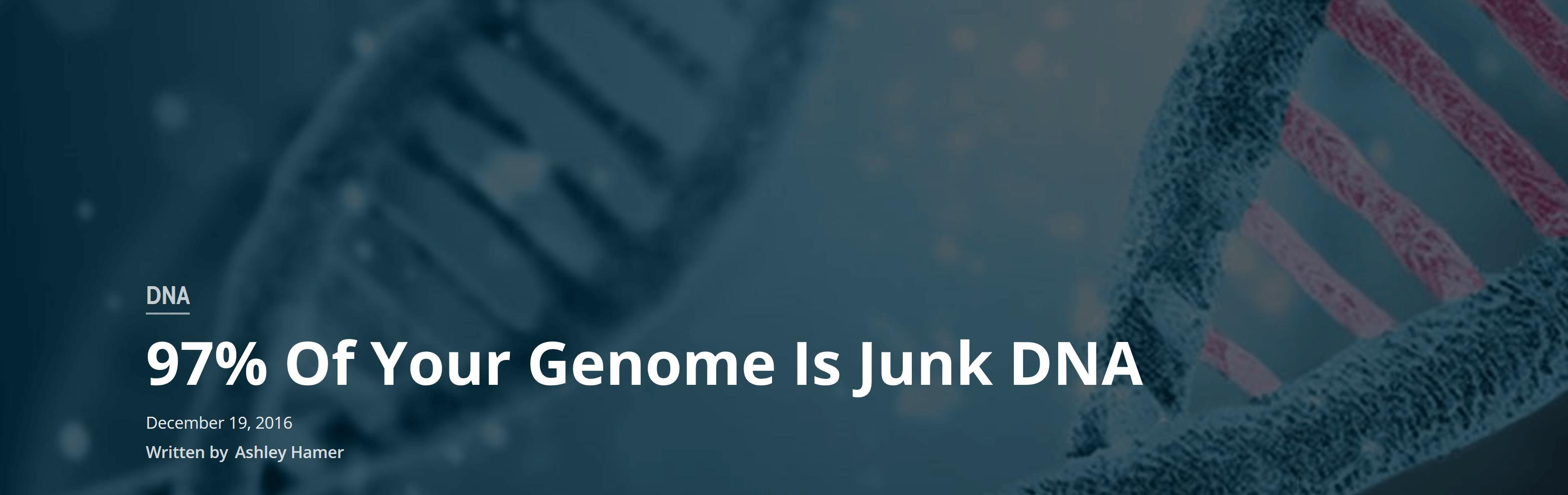 97% מהגנום שלך זה DNA זבל