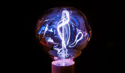 brown-framed-light-bulb-